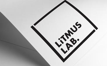 portfolio-litmus-lab-branding